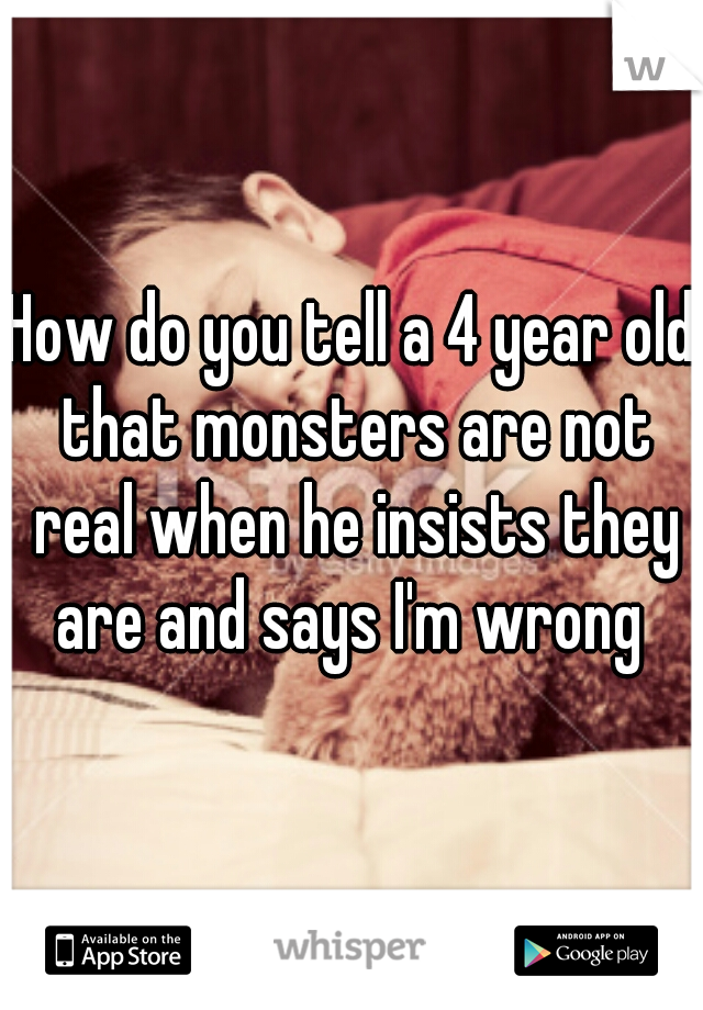 How do you tell a 4 year old that monsters are not real when he insists they are and says I'm wrong