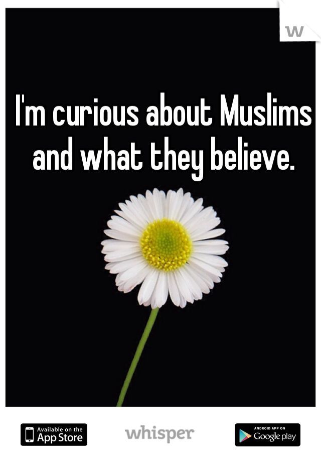 I'm curious about Muslims and what they believe.
