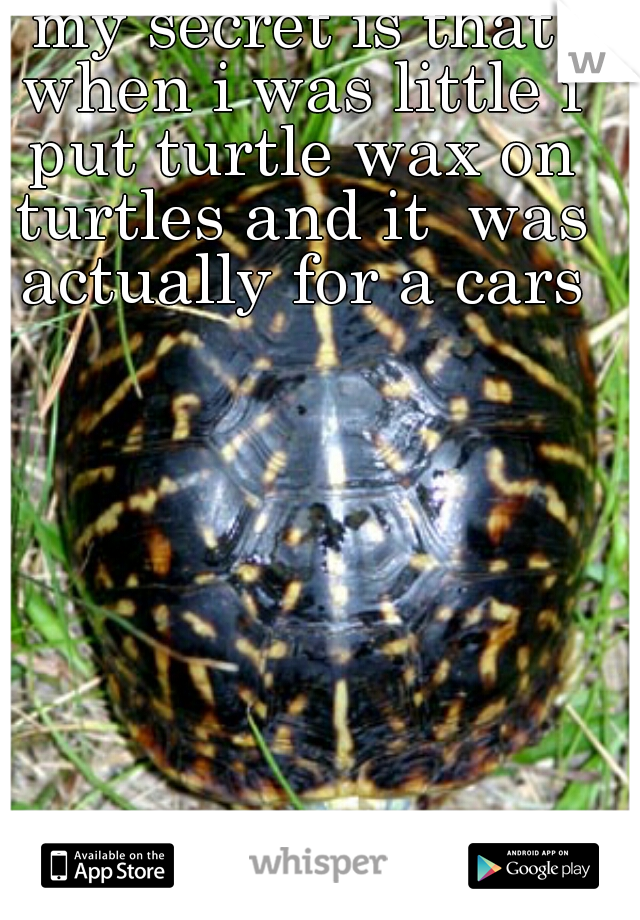 my secret is that when i was little i put turtle wax on turtles and it  was actually for a cars