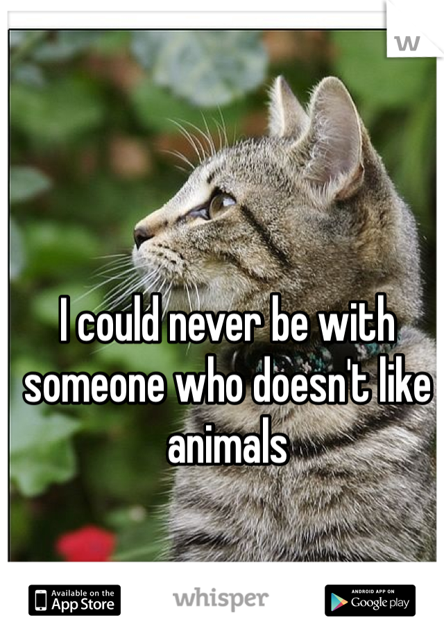 I could never be with someone who doesn't like animals