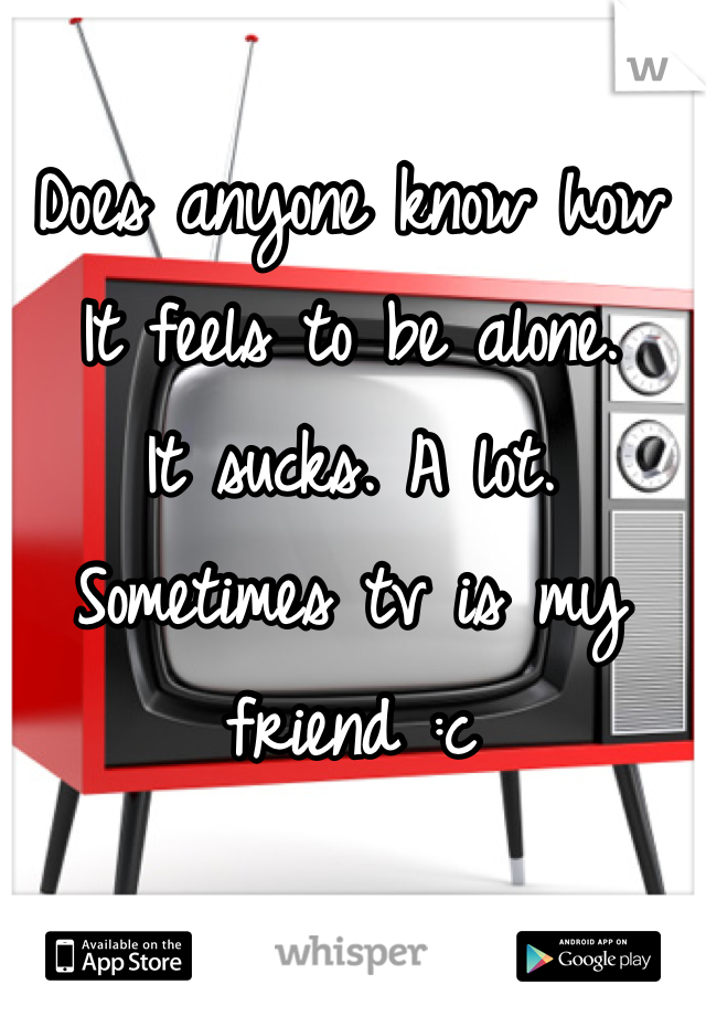 Does anyone know how  It feels to be alone. It sucks. A lot.  Sometimes tv is my friend :c