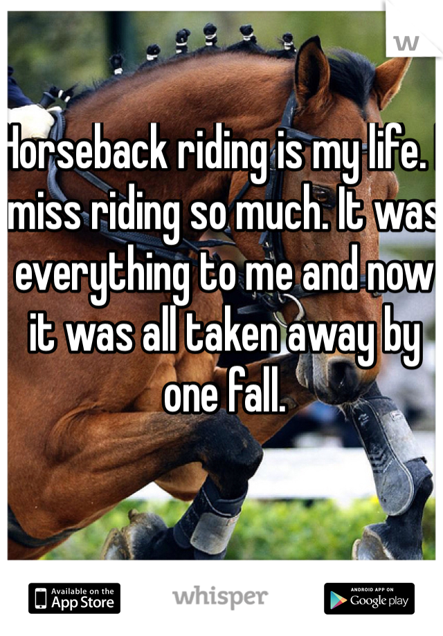 Horseback riding is my life. I miss riding so much. It was everything to me and now it was all taken away by one fall.