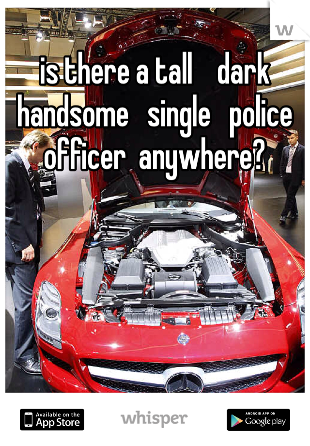 is there a tall    dark   handsome   single   police officer  anywhere?
