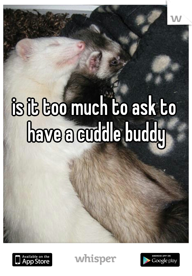 is it too much to ask to have a cuddle buddy