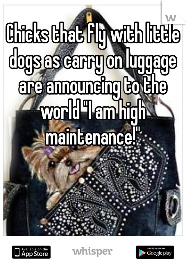 """Chicks that fly with little dogs as carry on luggage are announcing to the world """"I am high maintenance!"""""""
