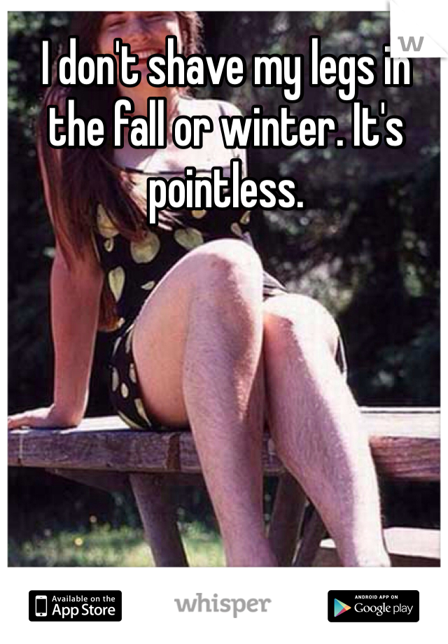 I don't shave my legs in the fall or winter. It's pointless.
