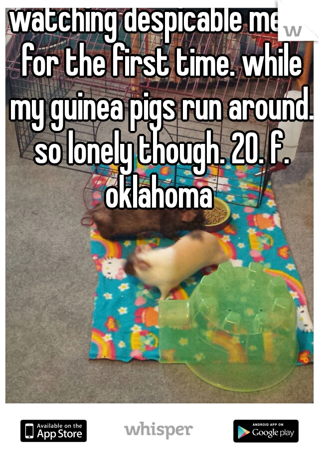 watching despicable me 2, for the first time. while my guinea pigs run around. so lonely though. 20. f. oklahoma