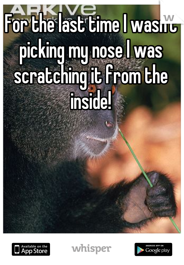 For the last time I wasn't picking my nose I was scratching it from the inside!