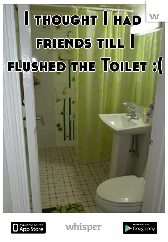 I thought I had friends till I flushed the Toilet :(