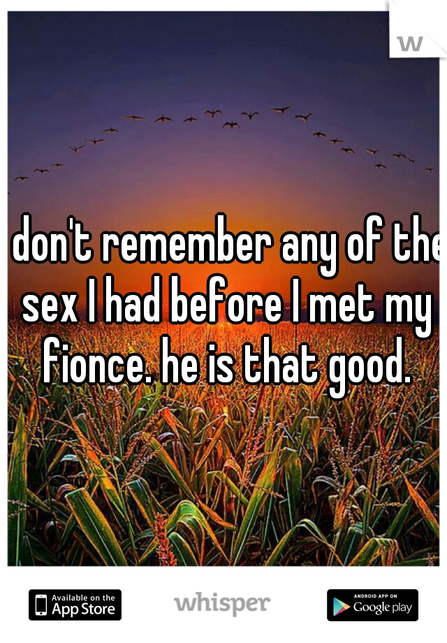 I don't remember any of the sex I had before I met my fionce. he is that good.