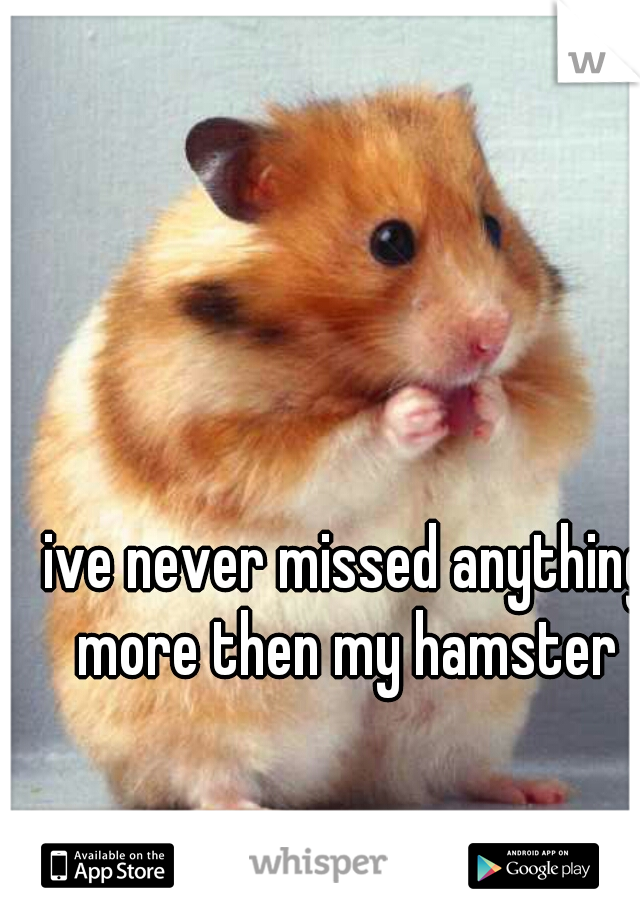ive never missed anything more then my hamster