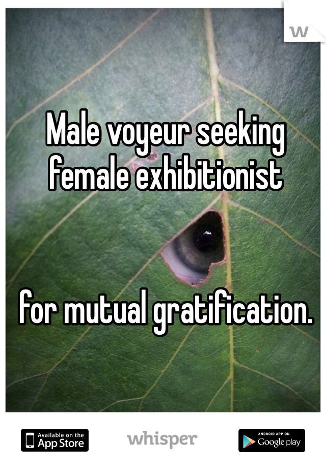 Male voyeur seeking female exhibitionist   for mutual gratification.