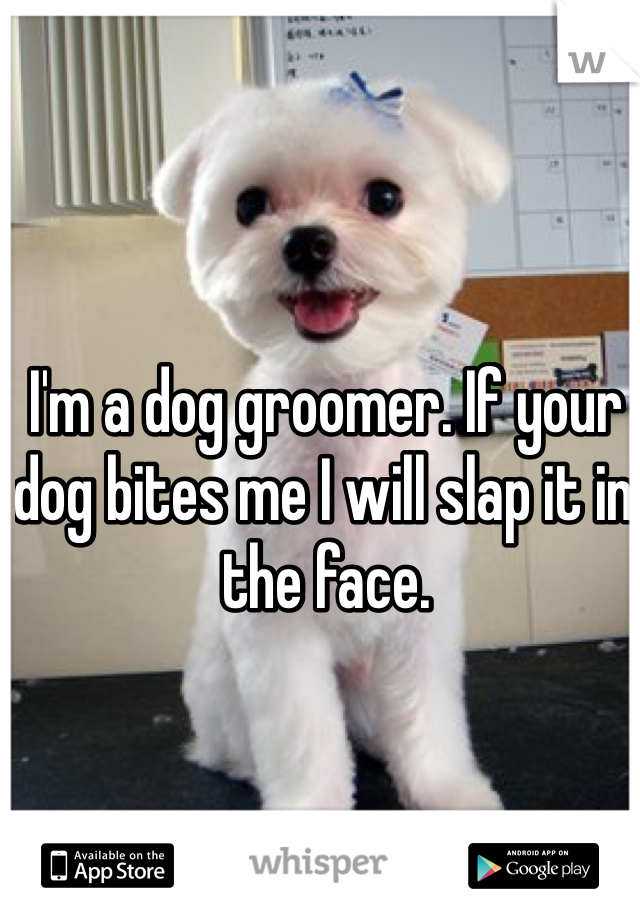 I'm a dog groomer. If your dog bites me I will slap it in the face.