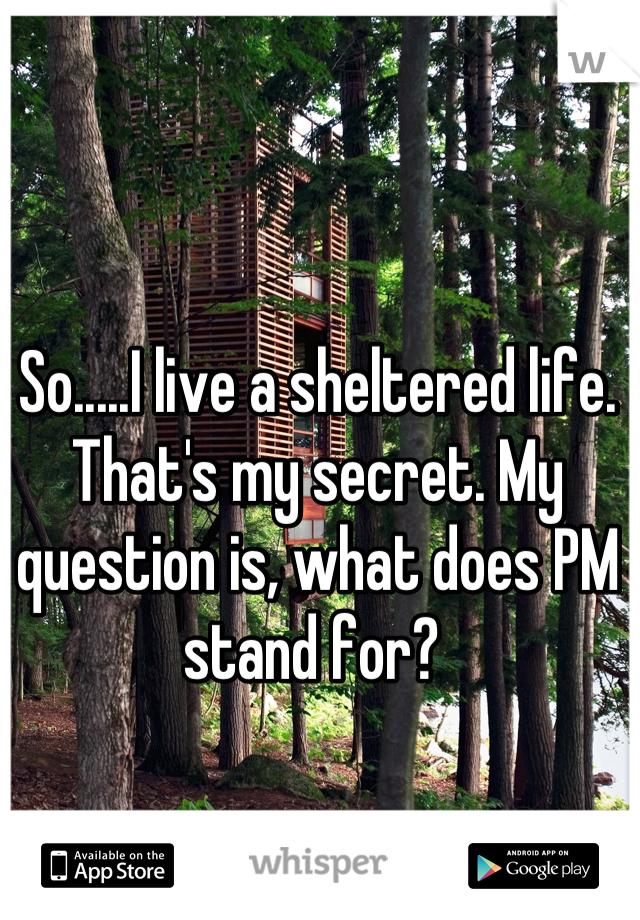 So.....I live a sheltered life. That's my secret. My question is, what does PM stand for?