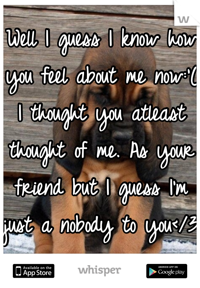 Well I guess I know how you feel about me now:'( I thought you atleast thought of me. As your friend but I guess I'm just a nobody to you</3