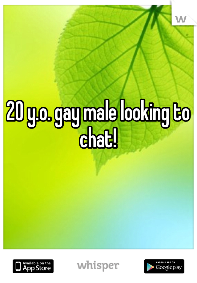 20 y.o. gay male looking to chat!