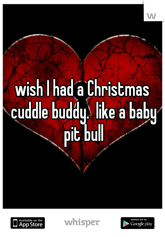wish I had a Christmas cuddle buddy.  like a baby pit bull