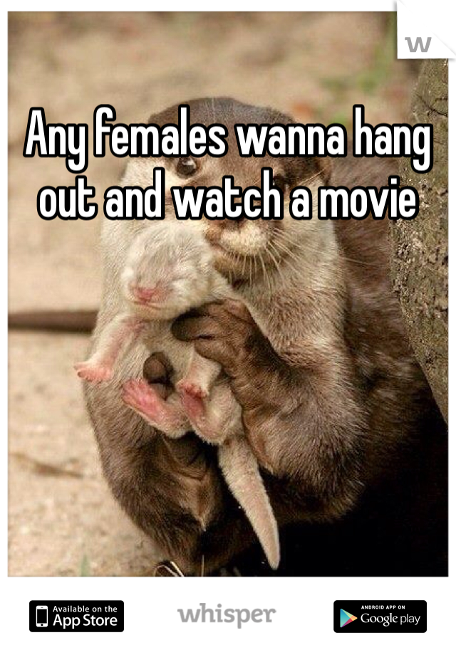 Any females wanna hang out and watch a movie