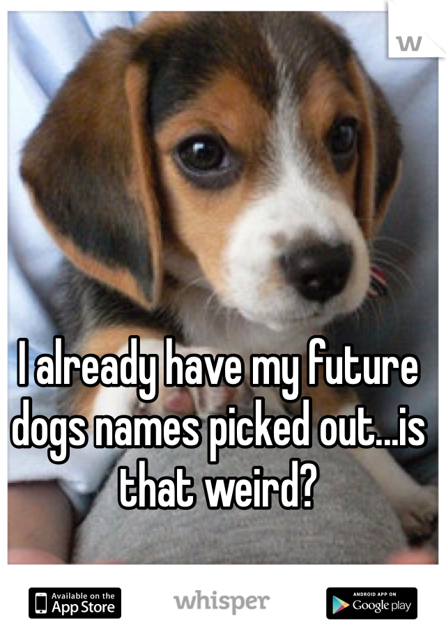 I already have my future dogs names picked out...is that weird?
