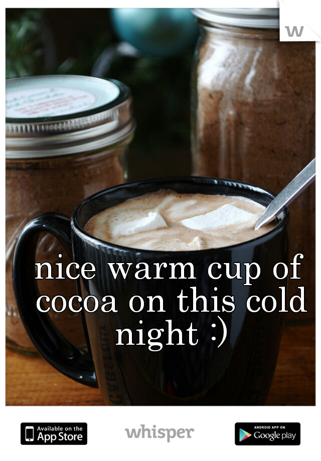 nice warm cup of cocoa on this cold night :)