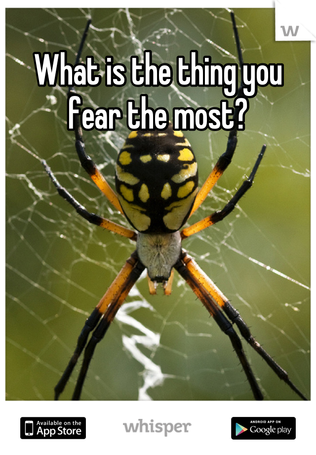 What is the thing you fear the most?