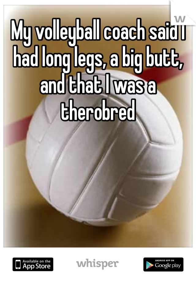 My volleyball coach said I had long legs, a big butt, and that I was a therobred