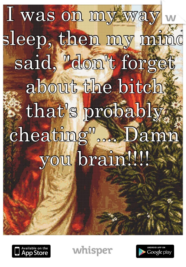 "I was on my way to sleep, then my mind said, ""don't forget about the bitch that's probably cheating"".... Damn you brain!!!!"