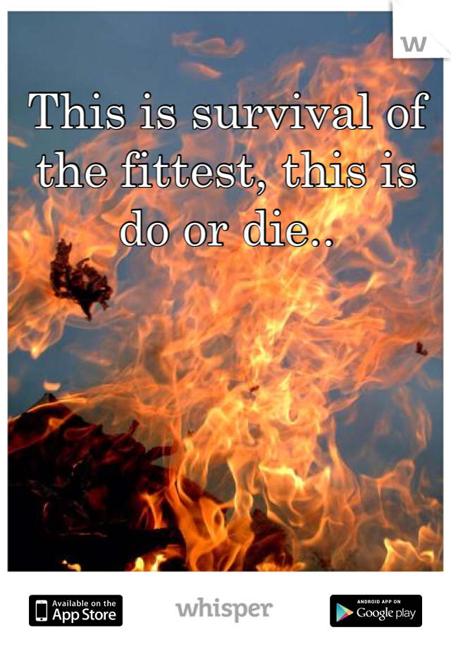 This is survival of the fittest, this is do or die..