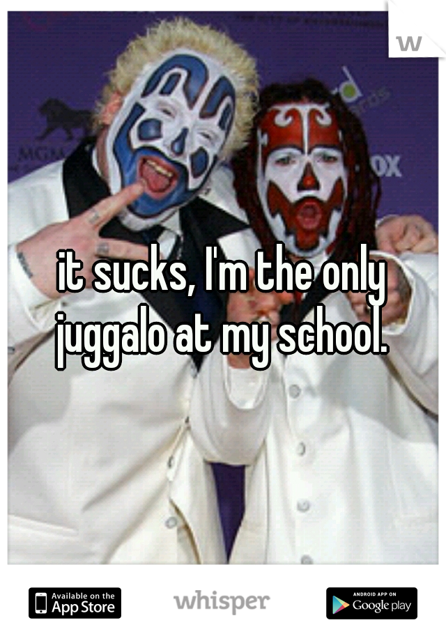 it sucks, I'm the only juggalo at my school.