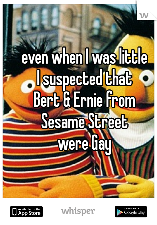 even when I was little  I suspected that  Bert & Ernie from  Sesame Street  were Gay