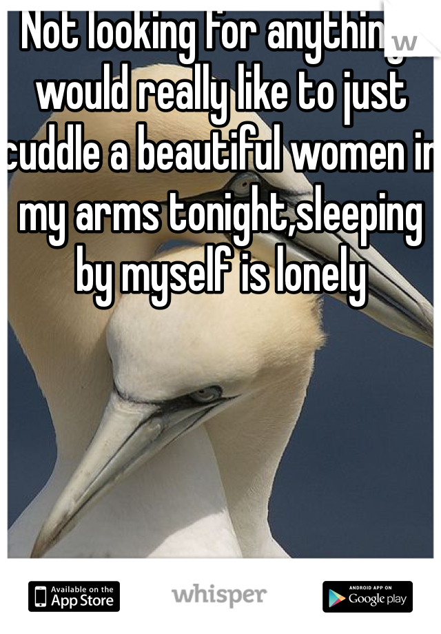 Not looking for anything ,  would really like to just cuddle a beautiful women in my arms tonight,sleeping by myself is lonely