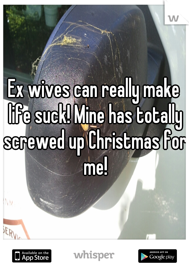 Ex wives can really make life suck! Mine has totally screwed up Christmas for me!