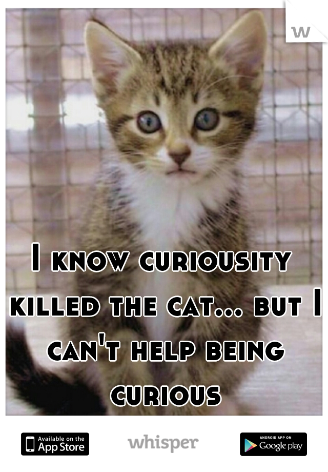 I know curiousity killed the cat... but I can't help being curious