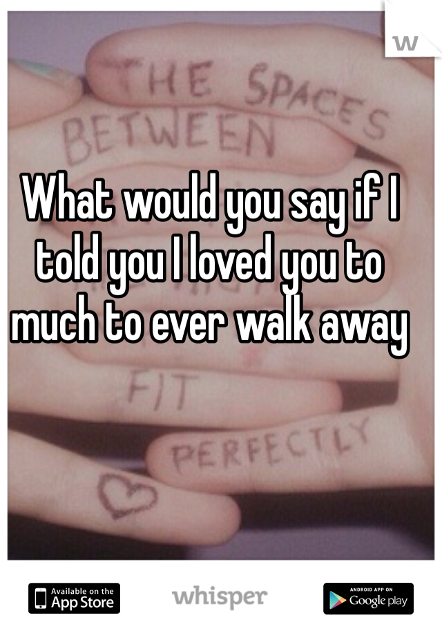 What would you say if I told you I loved you to much to ever walk away