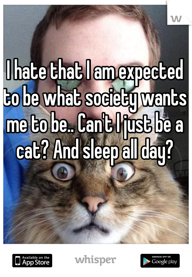 I hate that I am expected to be what society wants me to be.. Can't I just be a cat? And sleep all day?