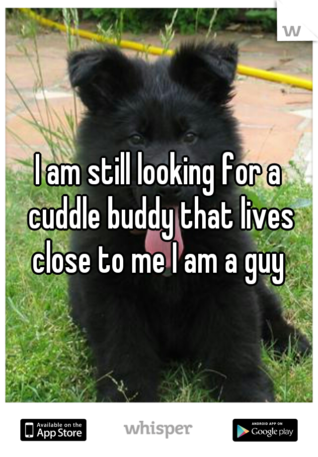 I am still looking for a cuddle buddy that lives close to me I am a guy