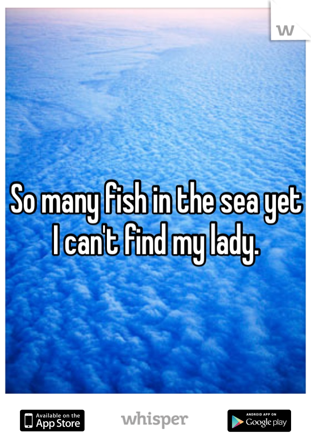 So many fish in the sea yet I can't find my lady.