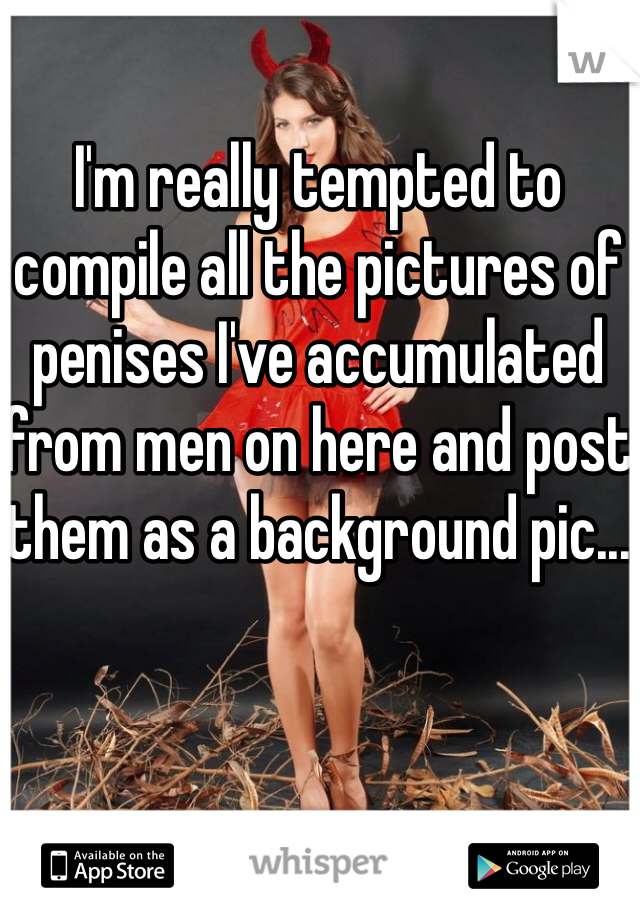 I'm really tempted to compile all the pictures of penises I've accumulated from men on here and post them as a background pic...