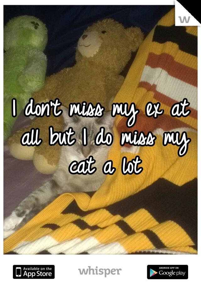 I don't miss my ex at all but I do miss my cat a lot