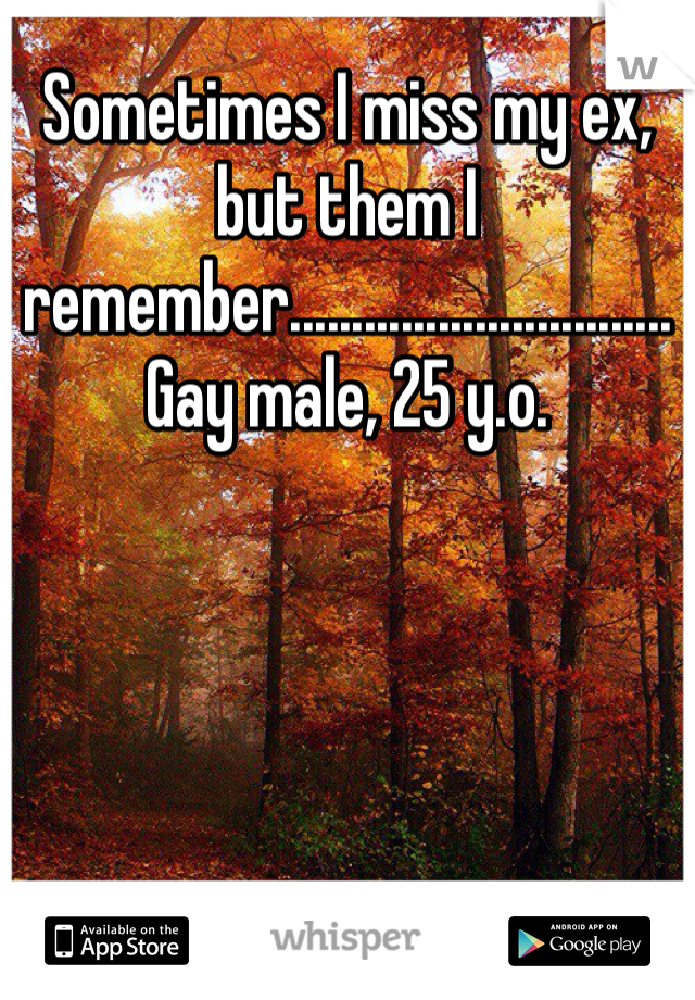 Sometimes I miss my ex, but them I remember............................... Gay male, 25 y.o.