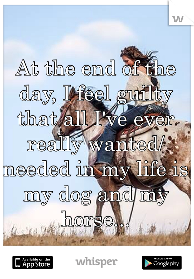 At the end of the day, I feel guilty that all I've ever really wanted/needed in my life is my dog and my horse...