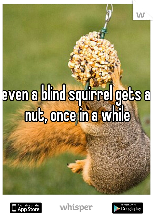 even a blind squirrel gets a nut, once in a while