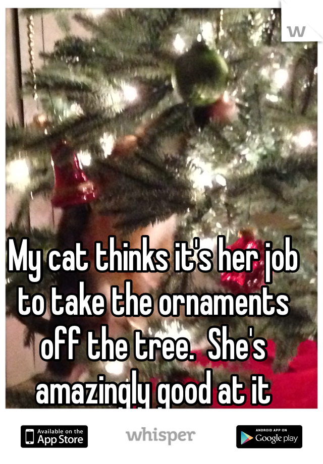 My cat thinks it's her job to take the ornaments off the tree.  She's amazingly good at it