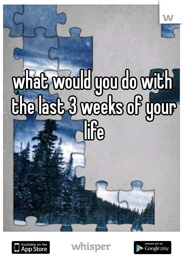 what would you do with the last 3 weeks of your life