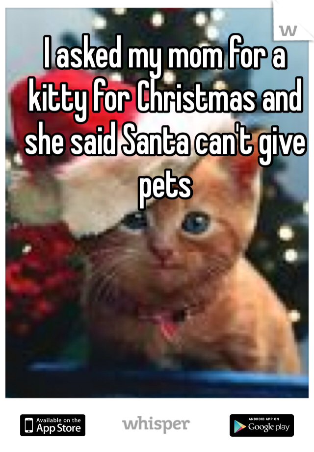 I asked my mom for a kitty for Christmas and she said Santa can't give pets
