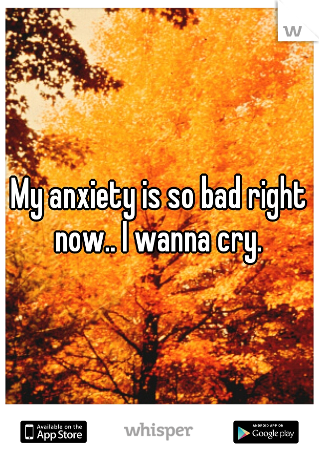 My anxiety is so bad right now.. I wanna cry.