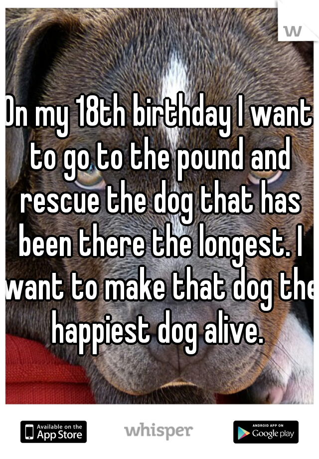On my 18th birthday I want to go to the pound and rescue the dog that has been there the longest. I want to make that dog the happiest dog alive.