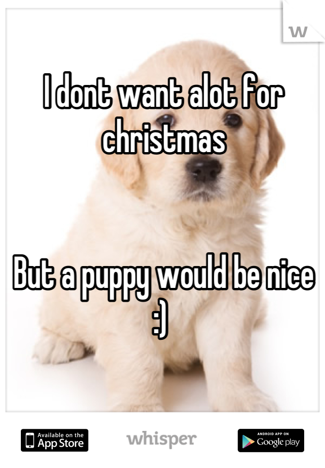 I dont want alot for christmas    But a puppy would be nice :)