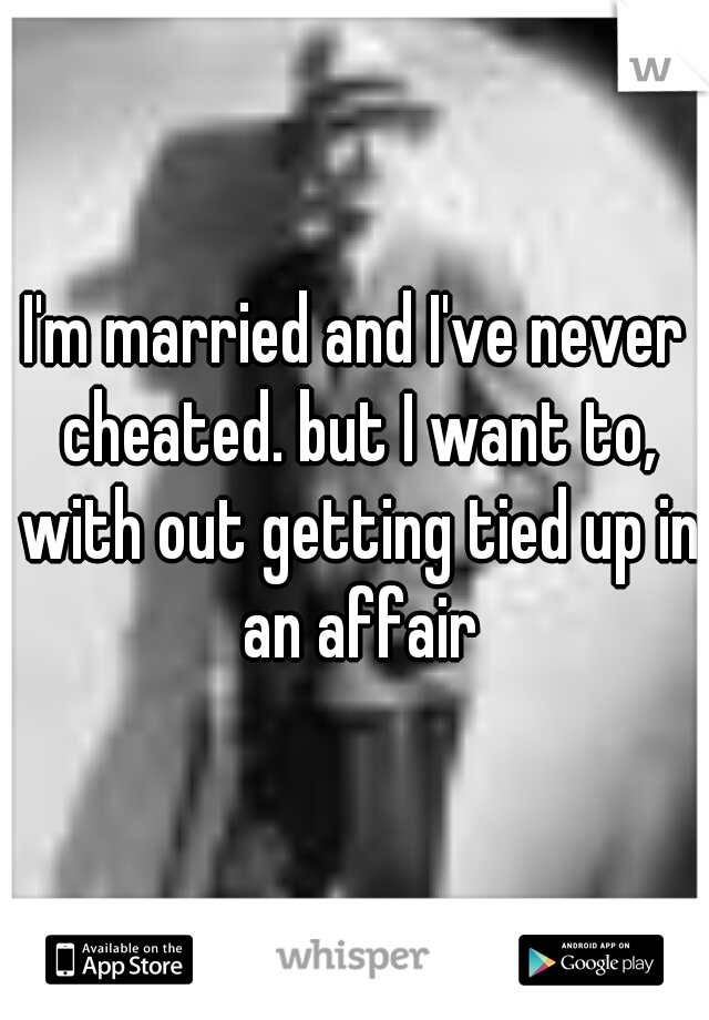 I'm married and I've never cheated. but I want to, with out getting tied up in an affair