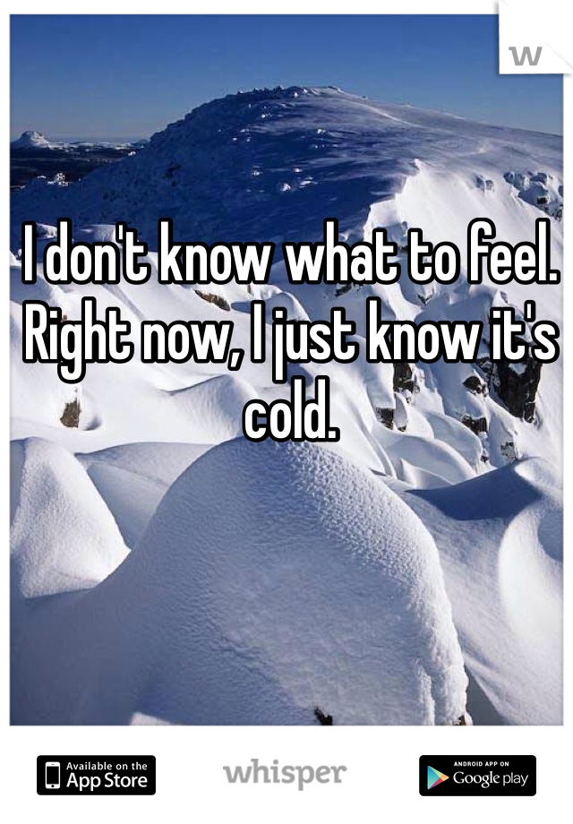 I don't know what to feel. Right now, I just know it's cold.